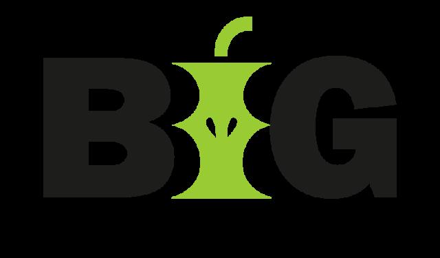 BIG_vit (3)